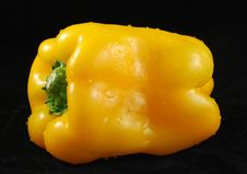 Free Yellow Bell Pepper Royalty Free Stock Photography - 6384477