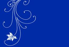 Free Floral Design Stock Photo - 6384980