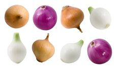 Onion Multicolored (isolated). Stock Images