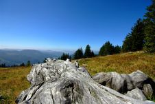Free On The Top Of The Mountain Royalty Free Stock Image - 6387356