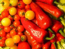 Free Garden Stuff Stock Images - 6388004