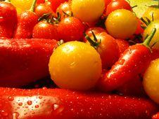 Free Garden Stuff Royalty Free Stock Photo - 6388115