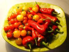 Free Garden Stuff Royalty Free Stock Photo - 6388185
