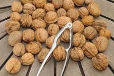Free Several Nuts Royalty Free Stock Photography - 6388607