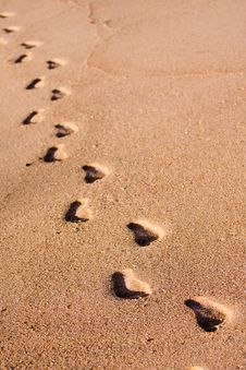 Free Foot Prints On The Beach Stock Photo - 6388670