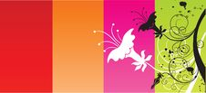 Free Funky Colorful Flower Stock Photos - 6389053