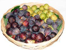 Free Fig Fruit Royalty Free Stock Photos - 6389708
