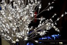 Free White Bush With Glowing Lights. Stock Images - 63897614