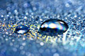 Free Drops Stock Image - 6391541