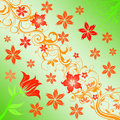 Free Flowers Background Stock Images - 6392634