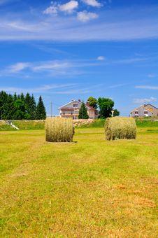 Free Bales Of Hay Stock Image - 6390431