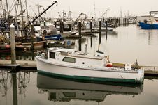 Free Green And White Fishing Boat Royalty Free Stock Photos - 6391328