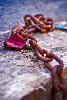 Free Chain_1 Stock Photos - 6391593