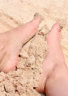 Free Two Legs On The Beach Stock Photography - 6391952