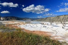 Free The Mammoth Hot Spring Area In Yellowstone Stock Photo - 6393250