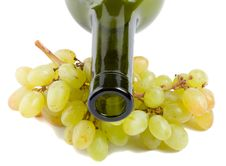 Free Bottleneck And Grapes Royalty Free Stock Photos - 6393548