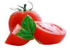 Free Fresh Tomatoes And Basil Royalty Free Stock Photo - 6394525