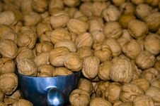 Free Walnut Bin With Scoop Stock Image - 6395921