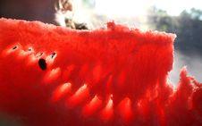 Free Watermelon Stock Image - 6396261