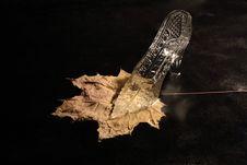 Glass Slipper Stock Image