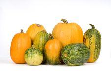 Free Pumpkins Stock Image - 6399331