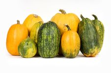 Free Pumpkins Stock Photography - 6399412