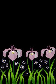 Free Flower Stock Image - 6399661