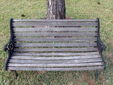 Free Garden Chair With Tree On The Back Royalty Free Stock Photos - 640028
