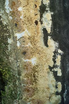 Free Old Wall. Texture Royalty Free Stock Photos - 640918