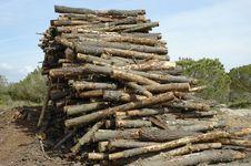 Free Log Dump Stock Photography - 641742