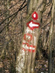Free Hiking Waymark Stock Images - 644824