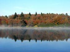 Free Woodland Reflection Royalty Free Stock Photo - 645245