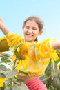 Free Beauty Teen Girl And Sunflower On Nature Stock Images - 6403424