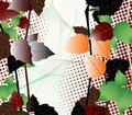Free Autumn Background Royalty Free Stock Images - 6406269