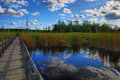 Free Boardwalk Into The Marsh Royalty Free Stock Photo - 6407615