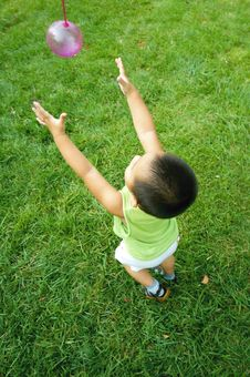 Free Baby Playing On Lawn Royalty Free Stock Photography - 6402697