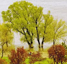 Free Danube In Fall Stock Photos - 6402943