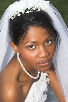 Free Beautiful Bride Royalty Free Stock Photos - 6403538