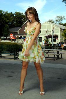 Free American Beauty Royalty Free Stock Photo - 6404195