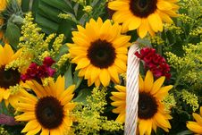 Free Flower Gift Basket Stock Photography - 6404312