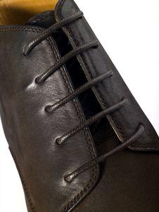 Free Shoelace Stock Image - 6404971