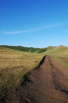 Free Road And Pasture Royalty Free Stock Photos - 6407808