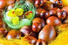 Free Chicks In Basket With Easter Eggs Royalty Free Stock Image - 6410156
