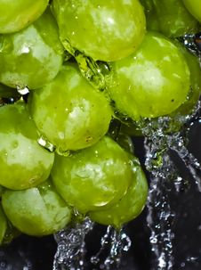 Free Green Grapes Stock Image - 6410851