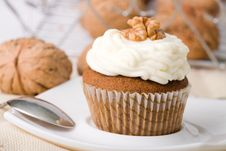 Free Walnuts Muffins Royalty Free Stock Photography - 6411177
