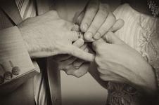 Free Wedding Ring Exchange Stock Photo - 6412100