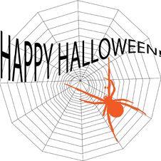 Free Halloween Spiderweb Stock Photo - 6412940