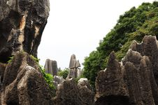 Free Stone Forest Stock Photography - 6412982