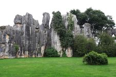 Free Stone Forest Stock Photo - 6413000