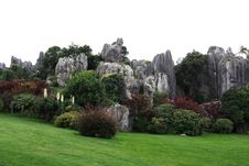 Free Stone Forest Stock Images - 6413134
